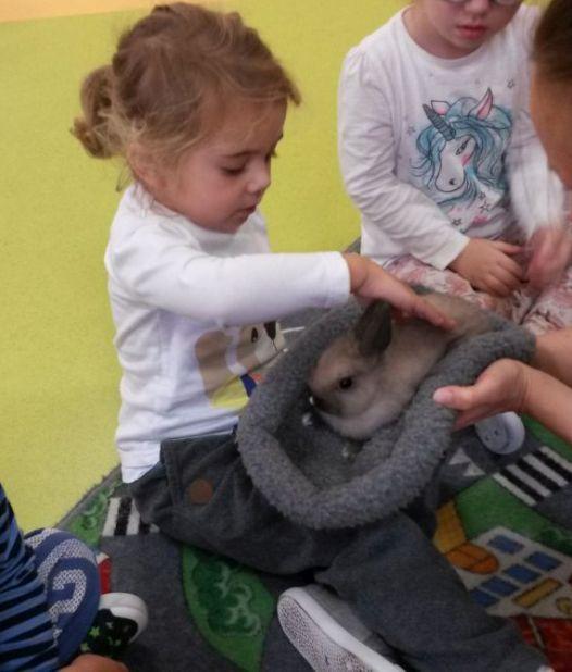 Nutka i Kicek w przedszkolu