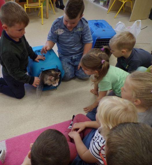 Spotkanie z hodowcą kotów